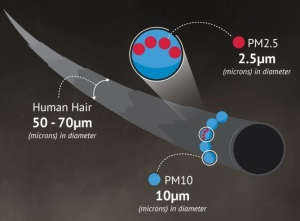 particulate-matter_r1